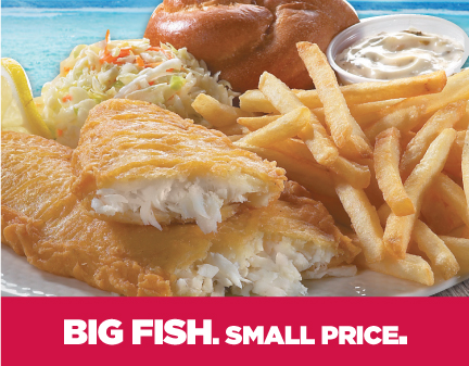 Big Fish Small Price
