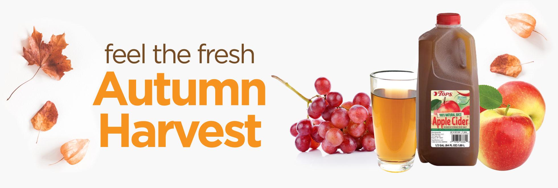 First Autumn Savings