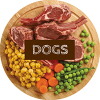 dogs meal