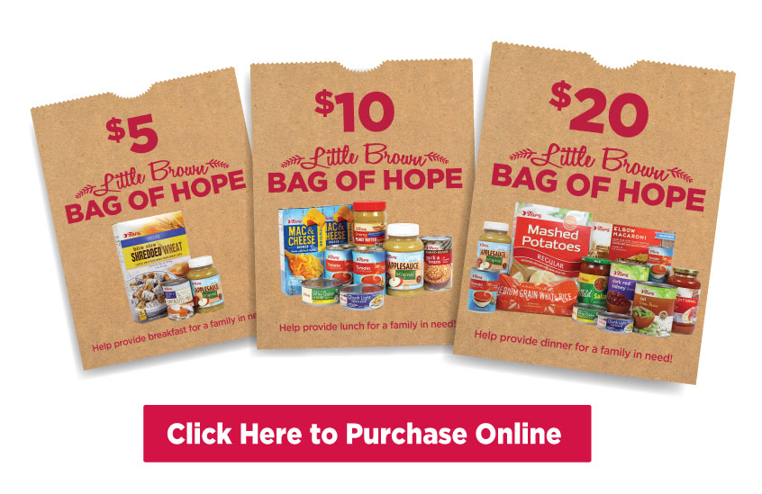 Little Brown Bags of Hope Donate