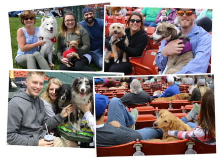 TOPS Dog Days at the Park Sponsors